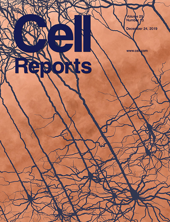 Dr. Pradeep Chaluvally-Raghavan Authors Paper in the Journal of Cell Reports